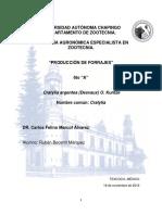 Cratylia argentea