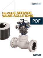 Severe Service Solutions