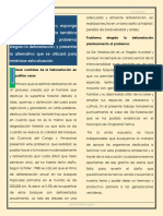 Actividad Individual Texto Informativo.