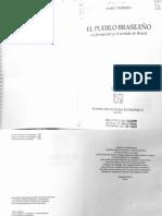 RIBEIRO Darcy - Clase color y prejuicio.pdf