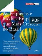 052008_Estudo Deloitte PME