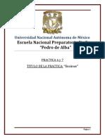 documents.tips_practica-1-enzimas.docx