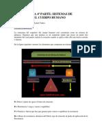 BIOMECANICA Sistema de Palancas