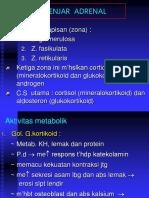2. Kelenjar Adrenal