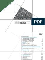 DESARROLLO URBANO ESQUEMA.pdf