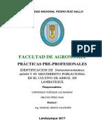 Protocolo ACARO OK.docx