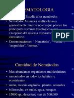 Nematodos_4a