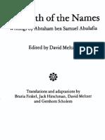 Abulafia - The Path of the Names