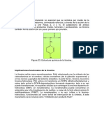 Tirosina_implicaciones funcionales