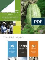 Nutricion Balanceada Mejora La Calidad Del Cacao.