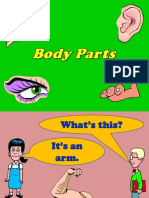 Body Parts Powerpoint