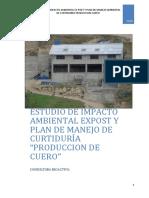 EIA Curtiembre.pdf