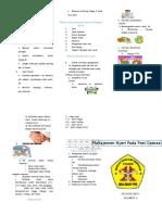 311979378 Leaflet Manajemen Nyeri