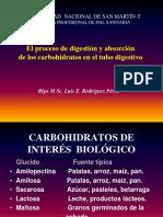 Digestion y Absorción de Carbohidratos 2017