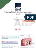 Anatomía y Fisiología Del Sistema Tegumentario. La Piel