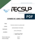 Informe 4 Loayza Saldaña