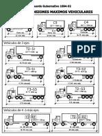 pesosydimensionesmaximos CAMINOS.pdf