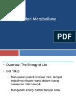 Biologi Umum_materi 2. Energi Dan Metabolisme