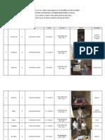 Data Lansia Desa Bt. Maccini Fix