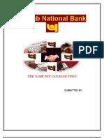Punjab Nationa Bank, Banking Industry in India