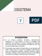 CONTAMINACIÓN AMBIENTAL_7