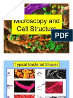 Microscopy & Cell Structure