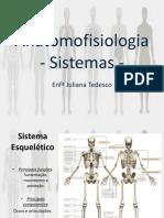 03 - Anatomofisiologia sistemas