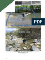 Informe Monitoreo Zaña 2013