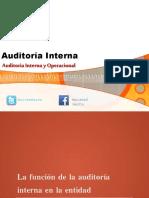 Auditoriainterna 150927222832 Lva1 App6892