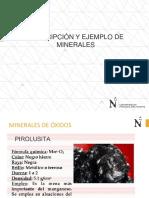 s4-Descripcion y Ejemplo de Minerales