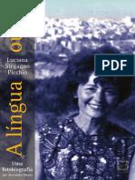lucianastegagnopicchio.pdf