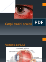 Corpi Straini Oculari