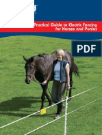 Horse Pony Guide