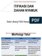 IDENTIFIKASI-DAN-PEMBEDAHAN-NYAMUK.pdf