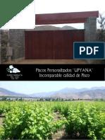 Catalogo Piscos VR1