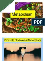 Metabolism & Fuel Growth 6