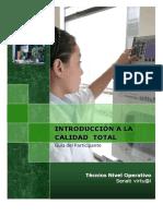 Manual Introduccion Calidad