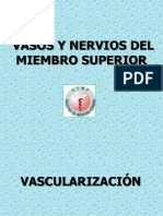 Vascularizacion e Inervacion
