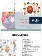 Pares craneales-2017..pptx