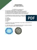 Estudo_dirigido_2