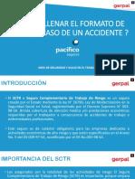 Cómo Llenar El Formato de Sctr - PDF