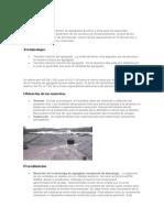 ASTM D75.docx