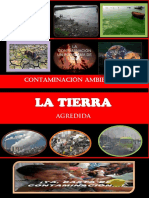 Revistacontaminacinambiental 130705153718 Phpapp01 (1)