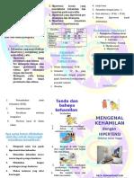 Leaflet Hipertensi Dalam Kehamilan