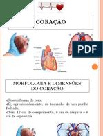 01 Coração Figuras Modificado (1)