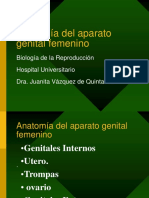 anatotrompa