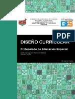 Documento Curricular Ed Especial
