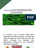 Orgnizacion ecologica
