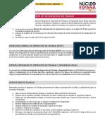 Resumen Ley de Inspección del Trabajo