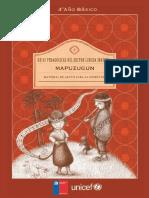 201406251554590.Mapuche4bversionweb.pdf